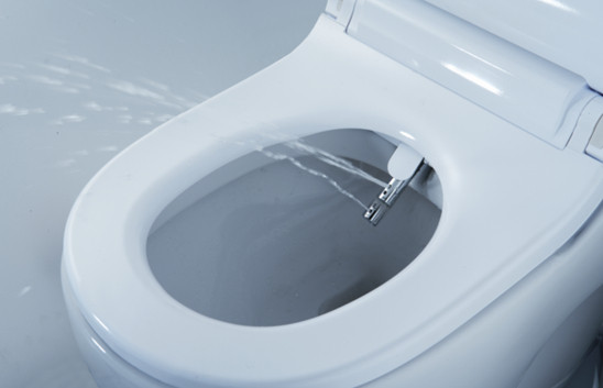 Un v ter con bidet es posible gracias al in wash de roca for Vater con bidet